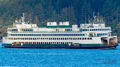 One Long Super Class Ferry - MV Hyak - Working Thru the San Juan Islands (AvgeekJoe) Tags: d5300 dslr hyak importedkeywordtags mvhyak nikon nikond5300 pugetsound sanjuancounty sanjuanislands sanjuans superclass superclassferries superclassferry tamron18400mm tamron18400mmf3563diiivchld wsf washingtonstateferries boat evergreentrees ferry ferryboat ship trees water