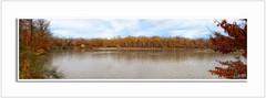 """"""" C'est à l'endroit où il est le plus profond que le lac est le plus calme. Entre au plus profond de toi et tu y trouveras le calme et la paix. """" (** Capo Jean-claude * <°)))) ><) Tags: soethemagiceye mordusdephotos flickr simplysuperb amateurphotofrance jeanclaudecapo photographie galerie photopassion talent capojeanclaudeyahoofr photographes mordusphotos betterthangood justetalent franceimage perfectcomposition amateurs onlyyourbest image inoubliable landscapesworld mesplusbellesphotos oeil canon nationalgeograplicworldwide artcityartists favoritepicture flickrunitedwinner flickrunitedaward codetofavefive canon6d photoshop ligthroom adobegoogle nickcollection topaz visittheworld views harmony favoriten goldstarawards theessenceofbeauty flickrglobal flickrsbest ngc images photographieamateur bellesimages rawjpeg flickrexploreit flickrcentrale today'sflickr visitdeworld thetravelguide youcancanon forêtdebouconnes lac automne méditation lâcherprise"""