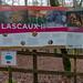 45121- Lascaux