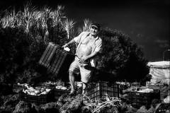Respect Monsieur! (vedebe) Tags: travail terre humain human people homme espagne noiretblanc netb nb bw monochrome société