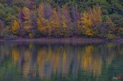 Colori (Stefania.foto6) Tags: caccamo lake alberi tree colors autunno