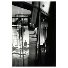 (Le_jeune_flâneur) Tags: leitzfocomatv35 leitzfocotar40mmf28 ilfordmgfbclassic kodakrapidselenium leicam7 leicasummilux50mmf14asph kodaktrix leica kodak film silvergelatinprint darkroomprint withpetegardner