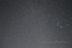 aDSC_2961 (miisabo) Tags: starry