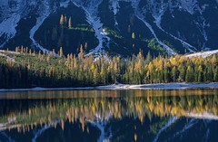 Luce (giannipiras555) Tags: lago alba luce alberi natura riflessi colori braies panorama trentino dolomiti nikon