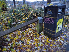 (Chris Hester) Tags: 481p brighouse yellow leaves litter bin