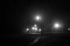 foggy (Rien van Voorst) Tags: streetphotography straatfotografie strasenfotografie fotografíacallejera photographiederue fotografiadistrada monochrome city urban highcontrast nederland thenetherlands fog mist nebel park