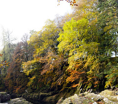 Photo of river north esk