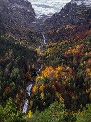Valle de Pineta (tonygimenez) Tags: otoño paisaje naturaleza aragón huesca españa pirineos agua bosque natur olympus omd10markiii zuiko12100 cascadas valle monteperdido sobrarbe bielsa