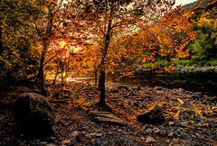 Touched By The Sun (James Korringa) Tags: sunset trees light fall autumn wes westvirginia new river scenic