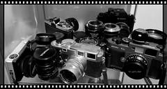 these eyes (Time Share) Tags: leica leicam3 m3 voigtlander voigtlanderbessar3a bessar3a rangefinder fim filmcamera 35mm ithinkihaveaproblem