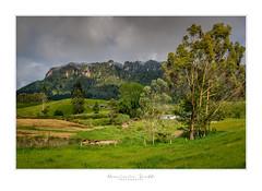 Horohoro Cliffs - New Zealand (Dominic Scott Photography) Tags: dominicscott newzealand bayofplenty horohorocliffs rural farmland volcanic cliff cliffs sony ilce7rm3 leefilters manfrotto sel2470gm gmaster