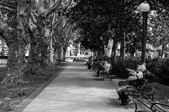 untitled (gregor.zukowski) Tags: poznan poznań park blackandwhite blackandwhitestreetphotography street streetphotography streetphoto peopleinthecity candid sleeping fujifilm urban