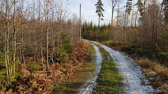 Curving (varmfront.se) Tags: road lane country autumn fall snow roslagen sweden riala