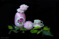 Still life con fiori e foglie (adrianaaprati) Tags: stilllife flowers chrysanthemums roses cup vase leaves november autumn