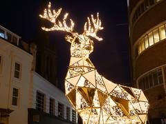Christmas tree wonderland (auroradawn61) Tags: afterdark christmastreewonderland bournemouth dorset uk england november 2019 reindeer bealeplace