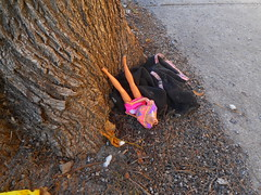 Butchered Barbie (navejo) Tags: montreal quebec canada barbie headless decapitateddoll tree sidewalk