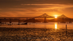 Richmond-San Rafael Bridge (Laura Macky) Tags: bayarea bridge landscape lauramacky nikon richmond richmondsanrafaelbridge sunset