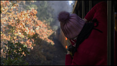 _SG_2019_10_0409_IMG_5057 (_SG_) Tags: ferien reise travel trip roundtrip round usa america amerika us vereinigte staaten vereinigtestaaten west coast united states westcoastoftheunitedstates westcoast westküste durango silverton narrow gauge railroad colorado