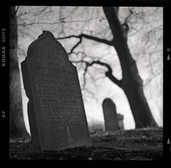 (Ir3nicus) Tags: ausen outdoor friedhof graveyard grabstein tombstone jüdisch jewish schwarzweis blackandwhite sw bw alt old hasselblad500cm carlzeissplanar80mm128ct mediumformat 6x6 square selfdeveloped 120 epsonv800 kodaktrix400 film analogue analog filmisnotdead ishootfilm ilovefilm hc110