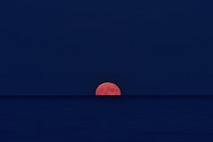 Alba di luna (luporosso) Tags: natura nature naturaleza naturalmente nikon nikonitalia nikond500 alba sunrise moonsunrise luna moon mare sea blu orablu bluhour