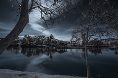 Reflecting On Lindo Lake In Infrared (Bill Gracey 25 Million Views) Tags: lindolake lakeside infrared infraredphotography ir convertedinfraredcamera highcontrast channelswapping surreal clouds reflections trees treereflections nature