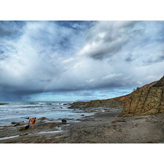 Rainbow in the Sky (tahitihut) Tags: california beach rainbow vizsla morrobay stormclouds seascape seasc