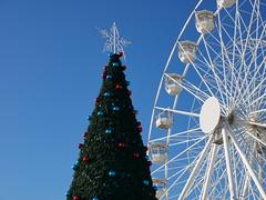 wheel and tree (auroradawn61) Tags: christmas christmassy bournemouth dorset uk england november 2019 lumixgx80 bigwheel