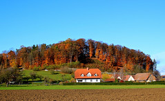 Spätherbst in der Steiermark (Wolfgang.W. ) Tags: steiermark unterlamm fehring österreich burgenland austria landscahft landscape acker wiesen field forest forst