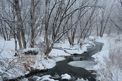 Winter Stream (Shedugengan) Tags: winter stream co colorado golden ponds snow cold icy