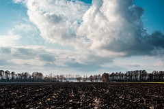 Pole w Kalu (Tymcio Piotr) Tags: kal pole field sky landscape