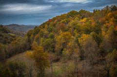 Fall Color (donnieking1811) Tags: tennessee chestnutmound landscape outdoors trees fallfoliage fallcolors fall autumn sky clouds hdr canon 60d lightroom photomatixpro