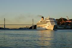 Cruise ship entering Nagasaki Bay (Senkawa Scott) Tags: bridge city morning sea ocean boat bay harbor nagasaki cruiseship ship