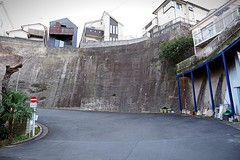 (Human-Faced Bun & Honey Pudding) Tags: residential street house slope curve cliff