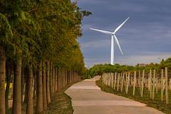A Wind Turbine by Grape Farm (jgaosb) Tags: wind turbine grape farm energy renew environment countryside