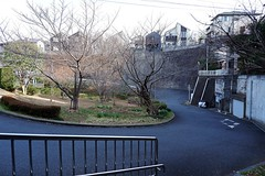 (Human-Faced Bun & Honey Pudding) Tags: residential street house slope curve cliff tree