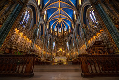 Notre-Dame Cathedral, Ottawa (Dan Fleury Photos) Tags: cathedral ottawa canada ontario heritage architecture ornamental interior blue ceiling serene