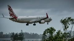 Coolangatta Airport Final Approach (grant368) Tags: virgin airlines aeroplane plane coolangatta airport final approach