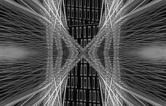 Erasmus's Web (beelzebub2011) Tags: composite mirrorimage bw monochrome multipleexposure