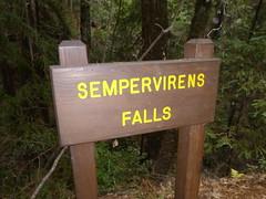 Nov2019-BigBasinCamping-P1040704 (aaron_anderer) Tags: bigbasin california state park camping fall fun chilly redwoods