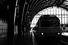 Antwerp Central Station (koen_jacobs) Tags: streetphotography blackandwhite antwerp