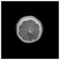 365 Infrared 332 Lemon (PeteMartin) Tags: 365 border bw infrared lemon amstelveeen netherlands
