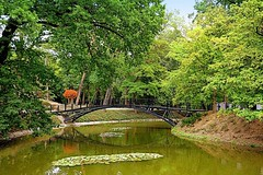 small bridge (majka44) Tags: bridge green water park nature tree waterlily light travel atmosphere waterscape lake
