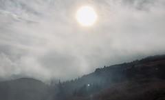 Mistique fog (Radu Andrei B) Tags: