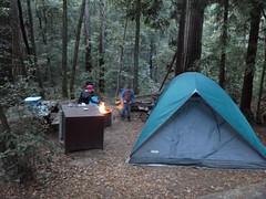 Nov2019-BigBasinCamping-xP1040643 (aaron_anderer) Tags: bigbasin california state park camping fall fun chilly redwoods