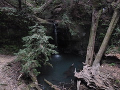 Nov2019-BigBasinCamping-P1040700 (aaron_anderer) Tags: bigbasin california state park camping fall fun chilly redwoods