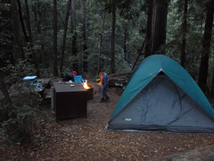 Nov2019-BigBasinCamping-P1040644 (aaron_anderer) Tags: bigbasin california state park camping fall fun chilly redwoods