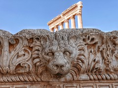Lion's head in Baalbek