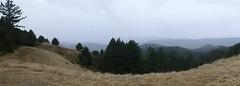 Nov2019-BigBasinCamping-P1040714 (aaron_anderer) Tags: bigbasin california state park camping fall fun chilly redwoods