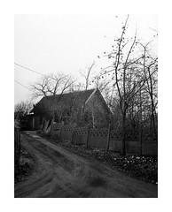 Jabłonka (4Rider) Tags: warmia północ north landscape krajobraz pejzaż photoartist drzewo drzewa tree trees las forest poems poetry