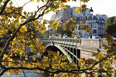 Pont de Sully (just.Luc) Tags: bridge pont brug brücke tree boom arbre baum árbol herfst herbst fall autumn automne parijs parigi paris îledefrance france frankrijk frankreich francia frança